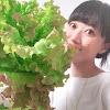 yamakana farm やまかなふぁーむ